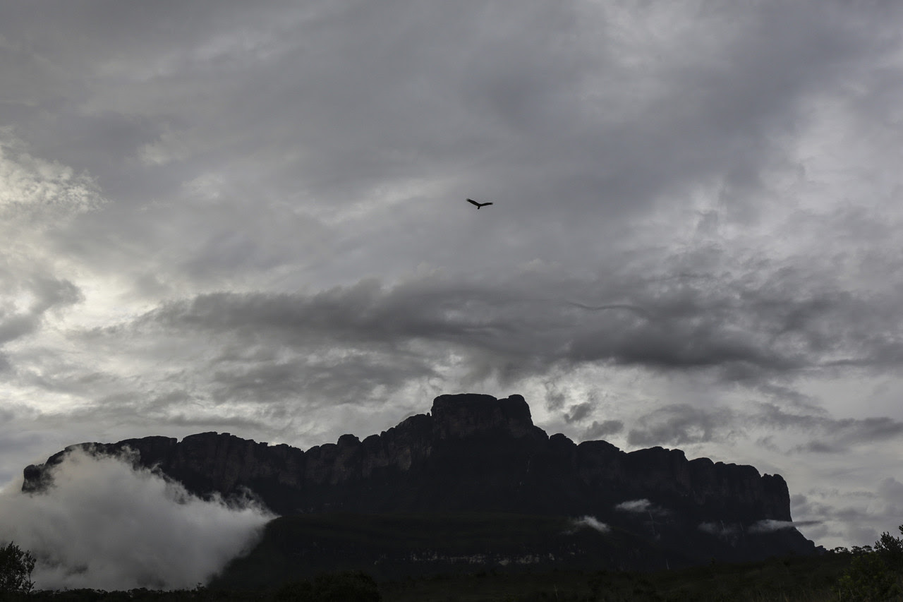 Unesco instó a Maduro a permitir evaluación del impacto de la minería ilegal en Canaima