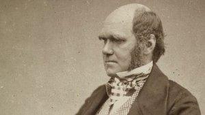 """La Universidad de Cambridge reveló qué pasó con el cuaderno original del """"árbol de la vida"""" de Charles Darwin"""