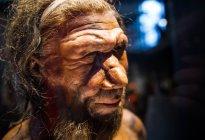 Legado genético de los Neandertales una clave crucial frente al Covid-19 (Estudio)