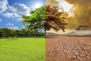"""El proyecto """"Acción climática, agua y salud"""" analizó los efectos del clima sobre la salud humana"""