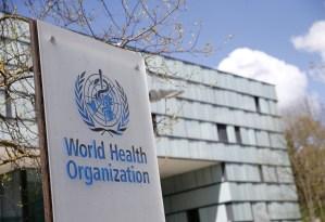 """La pandemia del Covid-19 """"podría haberse evitado"""", según expertos"""