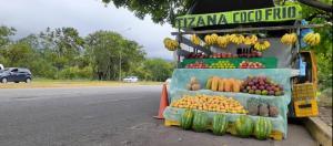 Fruteros de la autopista San Cristóbal – La Fría exponen su vida para sobrevivir
