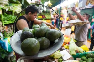 El oro verde culinario: Estos son los seis beneficios de comer aguacate a diario