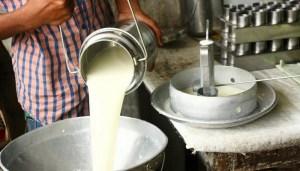 Industria láctea exige diésel para mantener las operaciones en Venezuela