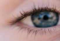 Cómo se adapta el cerebro de una persona que recuperó la visión tras padecer de ceguera durante la infancia