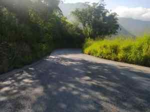 """La carretera La Victoria – Colonia Tovar """"se está hundiendo"""" entre la maleza y los huecos del pavimento (FOTOS)"""